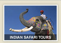 Indian Safari Tours